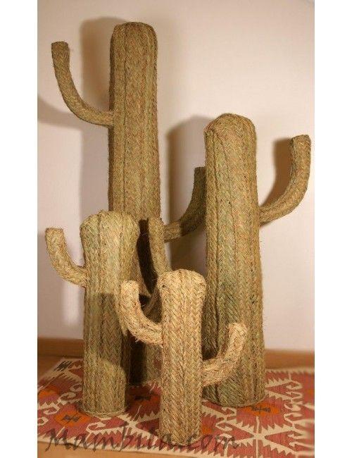 Cactus esparto mediano 2 H-1443