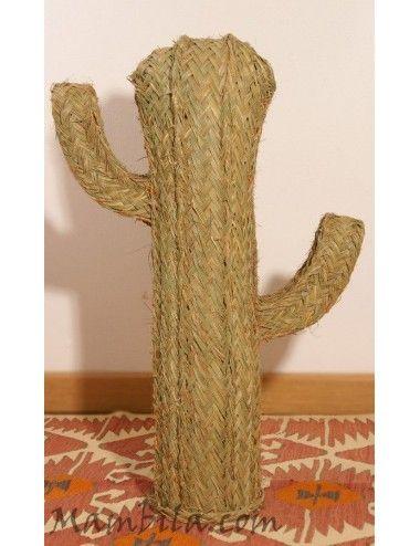 Cactus esparto mediano 2...