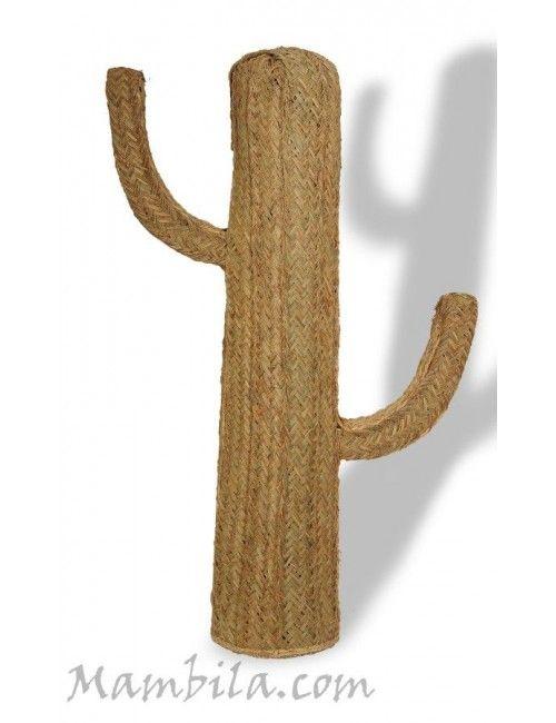Cactus esparto mediano (Consultar gastos de envio) H-1442
